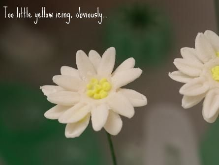 Gum paste flowers – daisy