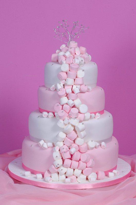 http://bakingproject.com/wp-content/uploads/2009/07/pinkmarshmallow.jpg