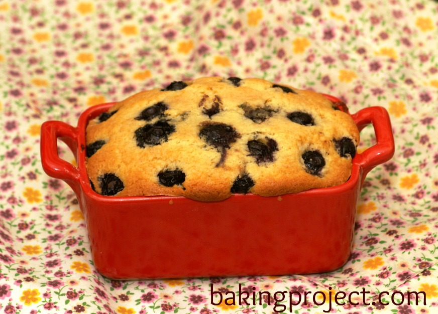 Cake with fruit (blueberries)